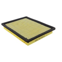 AIR FILTER GM ACDelco suitable for HOLDEN VT VX VY VZ COMMODORE V6 & V8 1997-2006 NEW